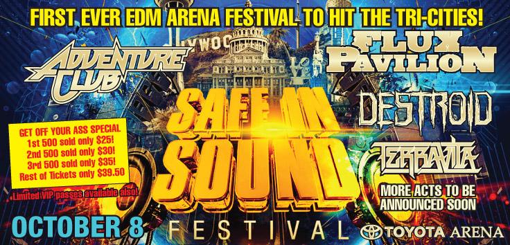 EDM Festival Show